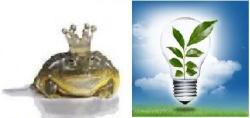 Transformation & Innovation